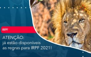 Já Estão Disponíveis As Regras Para Irpf 2021 Abrir Empresa Simples - Carvalho Contabilidade